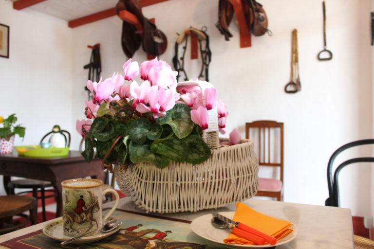 Santa Igia breakfast